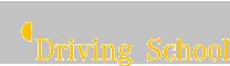 Mercedes Driving School Logo